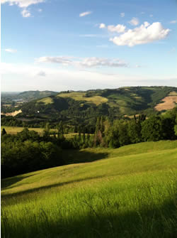 A snapshot from one my hikes through the Bolognese countryside